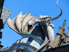 The Gringotts Dragon (Strangelove 1981) Tags: park usa holiday america orlando dragon florida harrypotter them universal studios universalstudios harrypotterworld
