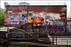 Various... (Alex Ellison) Tags: urban graffiti hotdog boobs tag babe poker poke graff southlondon throwup trackside spook sfl throwie nuta hdog 10foot