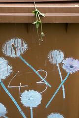 43 (martinhuhn) Tags: flowers martin no blumen bin huhn nr 43 mlltonne martinhuhn