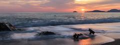 Punta corvo III (Enrico Cusinatti) Tags: sunset sea italy italia tramonto mare liguria montemarcello enricocusinatti