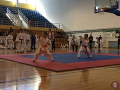 stefanou_15_5_2016_knockdown_15