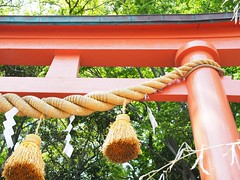 Torii (murozo) Tags: japan gate shrine   torii  akita  shimenawa  nikaho