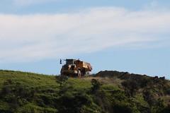 Te Manunui Maori Rock Art (ambodavenz) Tags: new art rock south canterbury zealand te maori gully frenchmans maungati manunui