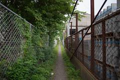 (kasa51) Tags: japan fence alley kanagawa narrow tsujido