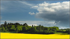 Heimat (horidole ist im Urlaub) Tags: landscape landschaft schwarzwald blackforest heimat badenwrttemberg fortnoire berndsontheimer