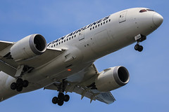 JAPAN AIRLINES   JAL   Boeing787-846   JA826J   Tokyo Haneda Airport (akg414p010) Tags: canon tokyo boeing jl jal haneda hnd japanairlines hanedaairport   dreamliner 7878 rjtt  boeing787    b788 ja826j ef100400mmf4556lisusm eos7dmark
