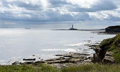 St Marys lighthouse from Rocky Island (DavidWF2009) Tags: northumberland stmaryslighthouse seatonsluice rockyisland