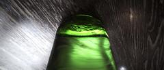 dp0q_160523_A (clavius_tma-1) Tags: green table tokyo bottle cafe sigma   shinjukugyoen laboheme quattro dp0