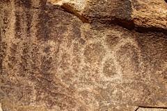 Old Woman Mountains Preserve, Painted Rock, Petroglyphs (darthjenni) Tags: california rock stone us unitedstates native indian american petroglyph essex rockart mojavedesert pictograph sanbernardinocounty nalc chemehuevi eastmojaveheritagetrail heartofthemojave nativeamericanlandconservancy