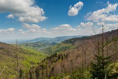 W oddali Beskid Mały. W dolinie Bystra (czargor) Tags: mountains landscape hill mountainside beskidy beskidslaski klimczok