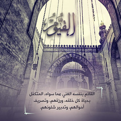 08 (ar.islamkingdom) Tags: