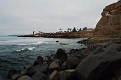Gloomy day at Sunset Cliffs (chase.bartholomew) Tags: sandiego oceanbeach sunsetcliffs seacliffs
