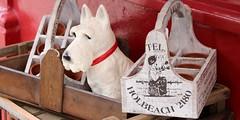 Portobello Souvenirs (lookaroundandsee) Tags: london nottinghill potobello shopping