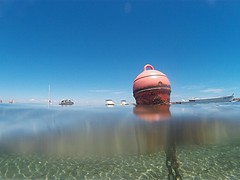 Cabo de Palos, Murcia. Spain (Sonia.Solano) Tags: ocean sea water mar mediterranean underwater snorkeling murcia cabodepalos mediterrneo buceo underwaterphotography buceando bajoelagua sj4000 qumoxsj4000