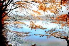 breath (Weirena) Tags: life nature water austria landscapes fineart lakes wallart quotes inspirational scenes weirena ireneweisz