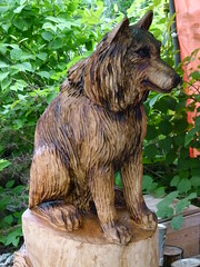 Dog Carving (Toats Master) Tags: wood dog art chainsaw carving