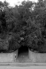 1219 (dogwelder) Tags: california street blackandwhite monochrome stairs us losangeles unitedstates outdoor sidewalk parkingmeter cornwellstreet