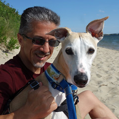 Ears! (DiamondBonz) Tags: summer dog pet bay ears whippet papa sandyhook spanky dogchal
