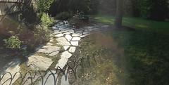 Watering is the new rain. (Rebecca Reinhart) Tags: iphone6photography sprinklers watering stonepath steppingstones