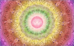 WW725_NordLark_Padma (walrii_blog) Tags: padma lotus rangoli enlightenment renewal ww725 weeklywalrus contestentry nordlark pink yellow green