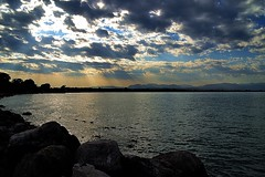 885 (roxyhopelust) Tags: flowers sunset summer sky italy cloud lake plant tree nature colors landscape photography pier boat photo ship place photos pic lagodigarda