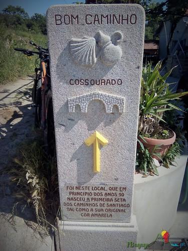 2015-05-23_100_CaminhoPortuguesSantiago