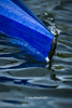BR-16-1244 (Chris Worrall) Tags: 2016 boat canoe canoeing chris chrisworrall competition competitor dramatic drop exciting kayak marathon power river speed splash spray vikingcanoeclub water watersport wave action bedfordhasler copyrightchrisworrall drcworrallatgmailcom may sport worrall theenglishcraftsman