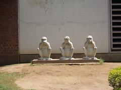 Gandhi Ashram, Ahmedabad, Gujarat, India (Harshit Trivedi's Photography) Tags: history freedom experiments movement truth peace famous gandhi monkeys struggle gujarat ahmedabad ashram mahatma nonviolence dandi gandhiji sabarmati satyagraha