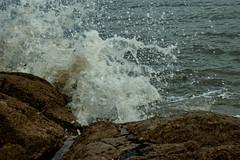 DSC00916 (Emily Hanley Photography) Tags: sea water wales rocks waves crash sony stormy spray splash rockpools fastshutterspeed porthdinllaen