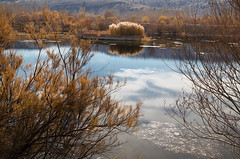 Kirmir Stream (Explored 18.05.2016) (RKAMARI) Tags: travel autumn trees house lake colour fall nature water beautiful clouds rural reflections landscape outdoor serenity rushes ankara 2015 gdl kirmir