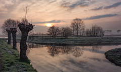 Mirror (Jorden Esser) Tags: morning trees sky sun mist reflection misty fog sunrise landscape dawn mirror canal frost canals serene baretrees waterscape willowtrees sundawn middendelfland nederlandvandaag
