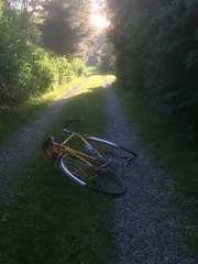 Sun at the end of the ride (ddsiple) Tags: cycling jacktaylor normtaylor