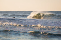 Barrel of Gold (dennisknowlesphotos) Tags: county water waves florida barrel surfing manatee swell gulfcoast surfphotography