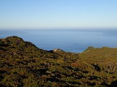 View from Twin Rocks (dracophylla) Tags: newzealand codfishisland whenauhoa