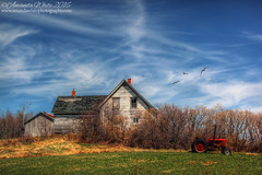At Rest (sminky_pinky100 (In and Out)) Tags: canada abandoned clouds landscape outdoors pretty novascotia decay scenic abandonedhouse colourful ruraldecay decaying redtractor omot cans2s