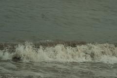 DSC00657 (Emily Hanley Photography) Tags: sea water wales rocks waves crash sony stormy spray splash rockpools fastshutterspeed porthdinllaen