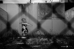 Fitzroy/Collingwood 16-05-16 (Divided Creative) Tags: street urban blackandwhite bw streetart art girl monochrome rain fence outdoors graffiti collingwood fitzroy australia melbourne victoria parasol cheatdeath
