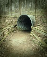 Kalamazoo Nature Center ~ HFF! (karma (Karen)) Tags: michigan tracks trails fences kalamazoo paths tunnels vignette naturecenter hff fencefridays