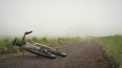 Fargo in Sea Haar (jason-l) Tags: mist fog cycling salsa eastlothian haar jmw johnmuirway salsafargo