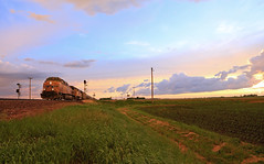 Killer sunset Light (GLC 392) Tags: life railroad light sunset sky cloud storm up evening illinois amazing open pacific farm space union wide railway il signals fields late ge signal flagg rochelle emd sd70m ac44cw 5190 6008 cw44ac ac4400cw