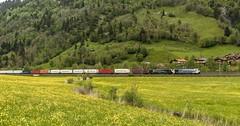 1431_2016_05_24_sterreich_Dorfgastein_LM_6189_907_&_MRCE_dispolok_ES_64_F4_-_027_DISPO_6189_927_mit_ekol_KV_Villach (ruhrpott.sprinter) Tags: railroad schnee salzburg train germany logo deutschland graffiti austria ic sterreich diesel natur wiese eisenbahn rail zug cargo 64 berge nrw passenger es lm blume fret ore gelsenkirchen ruhrgebiet f4 freight bb badgastein locomotives 189 lokomotive amtc cityshuttle sprinter badhofgastein ruhrpott gter 1144 dorfgastein ekol 1116 dispo europischer 6189 mrce tauernbahn lokomotion reisezug rpool dispolok nordrampe ellok cargoserv logserv intercombi lokfhrerschein gastainertal rocktainer