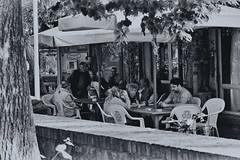 vivere in Italia I (SmoHoHo) Tags: caf menschen tisch baum mauer karten
