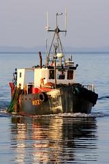 Briar Rose (calzer) Tags: morning sea rose bay scotland boat fishing october 2006 calm 92 briar moray ins burghead firth