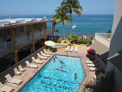 Villa Cofresi (waldy5897) Tags: color pool puertorico playa piscina palma rincon caribe alberca em10