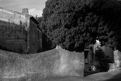 Walled Garden (John fae Fife) Tags: france xe2 noiretblanc monochrome blackandwhite nb fujifilmx hrault pzenas