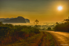 Early morning mist in Valle de Viñales (Hoppy1951) Tags: mist sunrise landscape morninglight nikon scenery cu cuba mogotes pinardelrio d600 viñales
