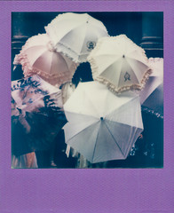 Fancy Umbrellas (Irrational Photography) Tags: polaroid theimpossibleproject impossible project retro vintage antique analogue analog hipster film photo picture onestep montreal quebec canada instant lab loilita umbrellas koala meatpie meat pie koalameatpie irrational photography