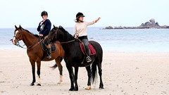 Calm (patrick_milan) Tags: people horse woman beach girl cheval women brittany femme bretagne cavalier fille plage finistre saintpabu
