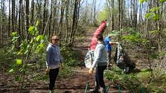 BagsOfHelp. Friends of Henllys LNR, Torfaen. May 2016 (Keep Wales Tidy) Tags: building team help bags lnr gabions henllys
