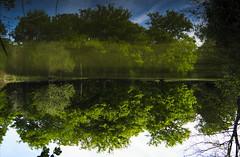 Wonderland (Ren-s) Tags: france loire blackandwhite chambord castle chateau pond étang sky ciel sun trees arbres reflexion light clouds nuages mr mirror miroir lac lake